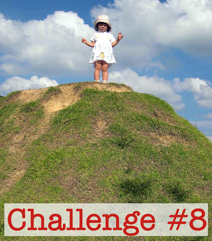 Challenge #8: Make This the Highest Priority You Can